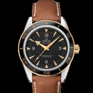 Omega Seamaster 300 233.22.41.21.01.001